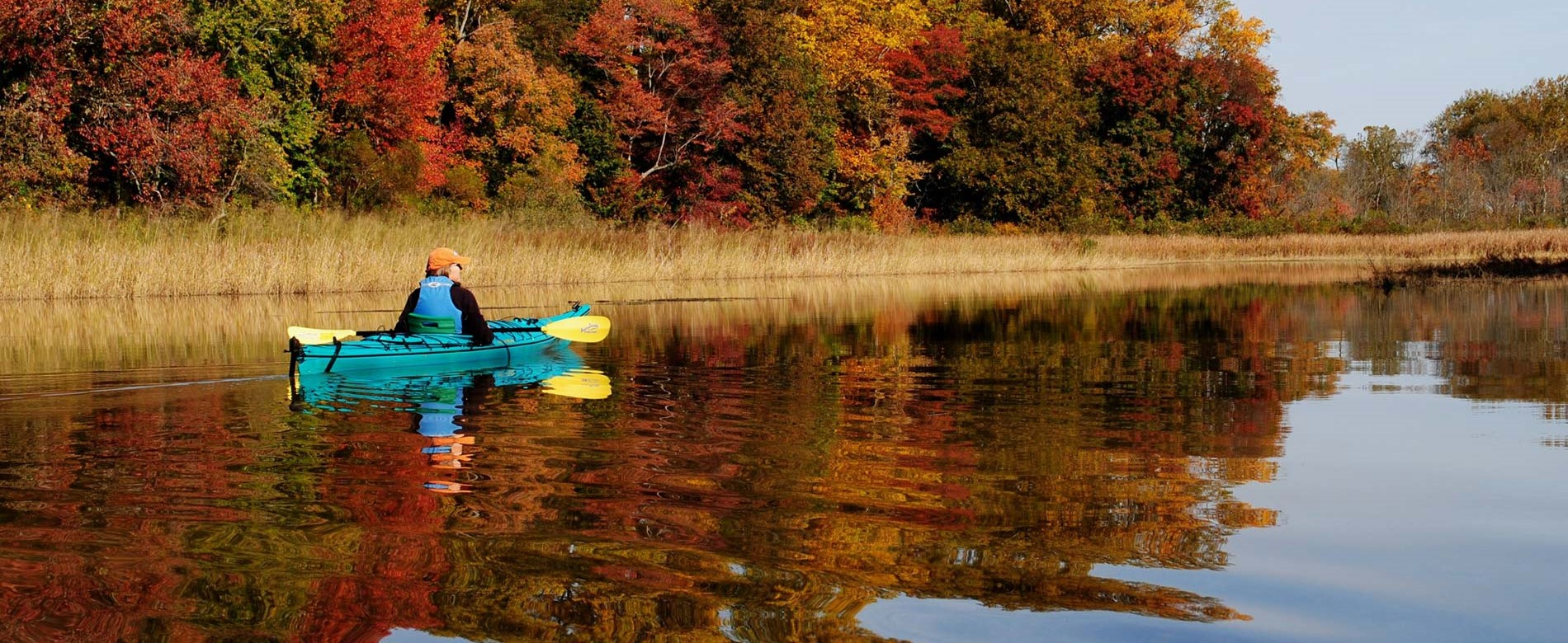 Paddler on the Chester river with fall colored leaves on the trees in the background. Many reds and browns.