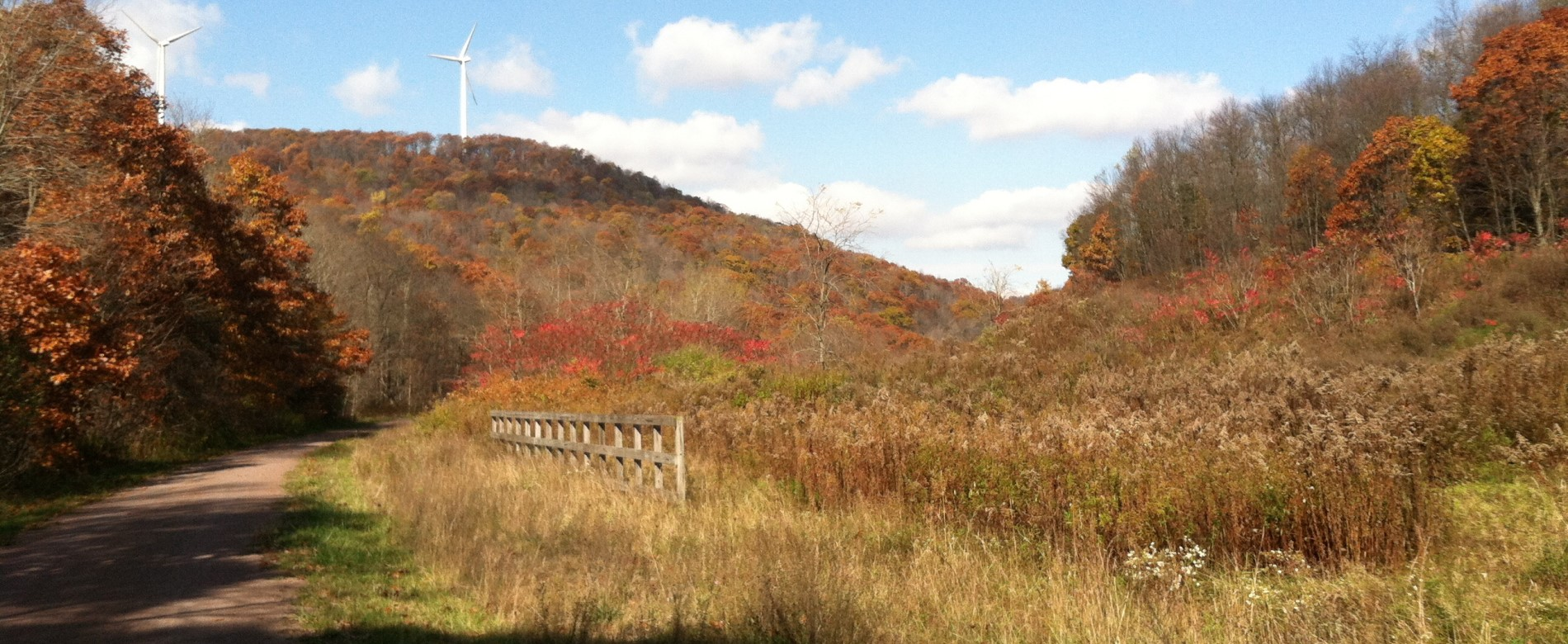 The Great Allegheny Passage in the fall