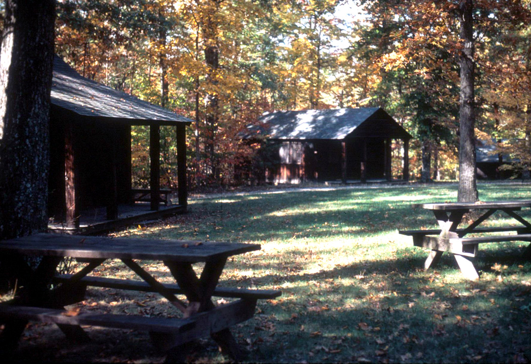 Picnic Area at Prince William Forest Park