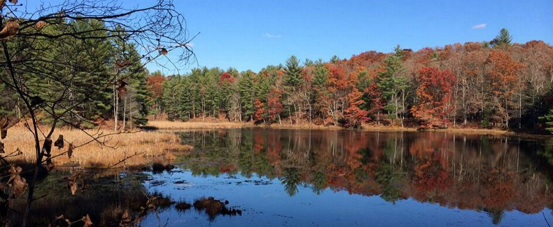 Colorful fall day on Lily Lake in Chenango Valley State Park