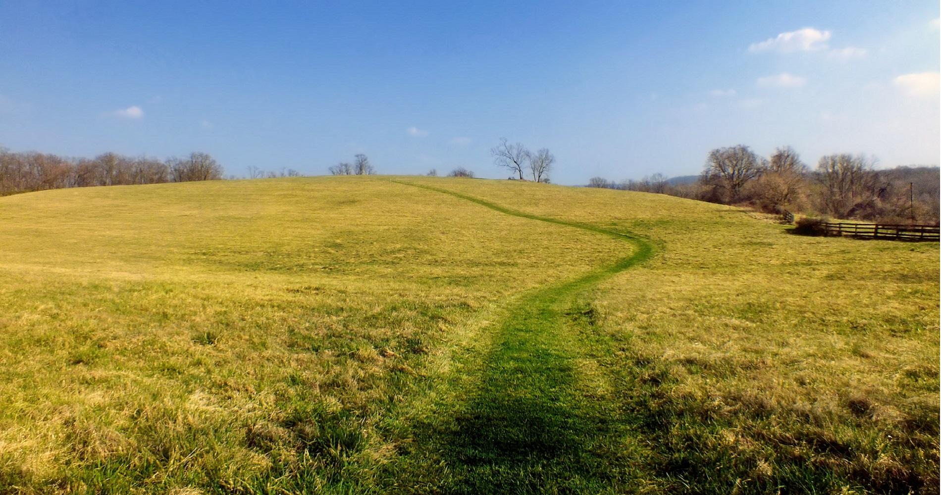 Native Lands Park field