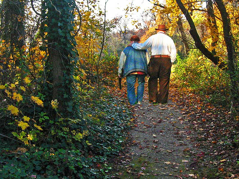 A couple taking a walk along a wooded trail.