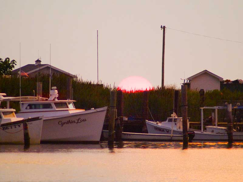 A Tangier Island marina with deadrise workboats.